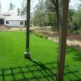 lawns-3