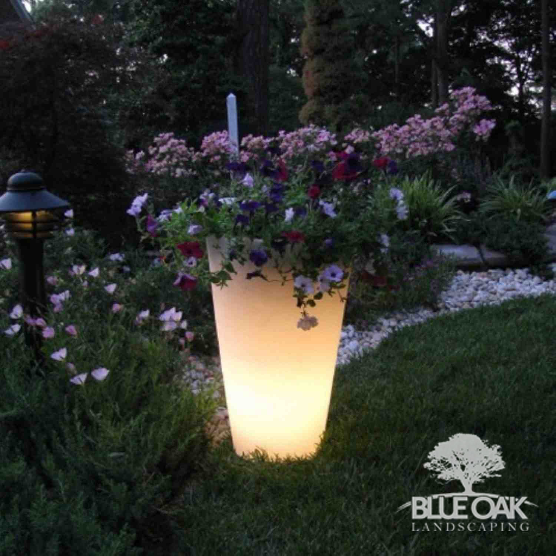 blue oak landscape design chico california glow in the dark planters. Black Bedroom Furniture Sets. Home Design Ideas