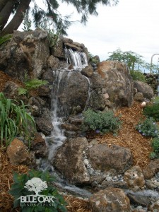 Blue-oak-landscaping-chico-landscape-design