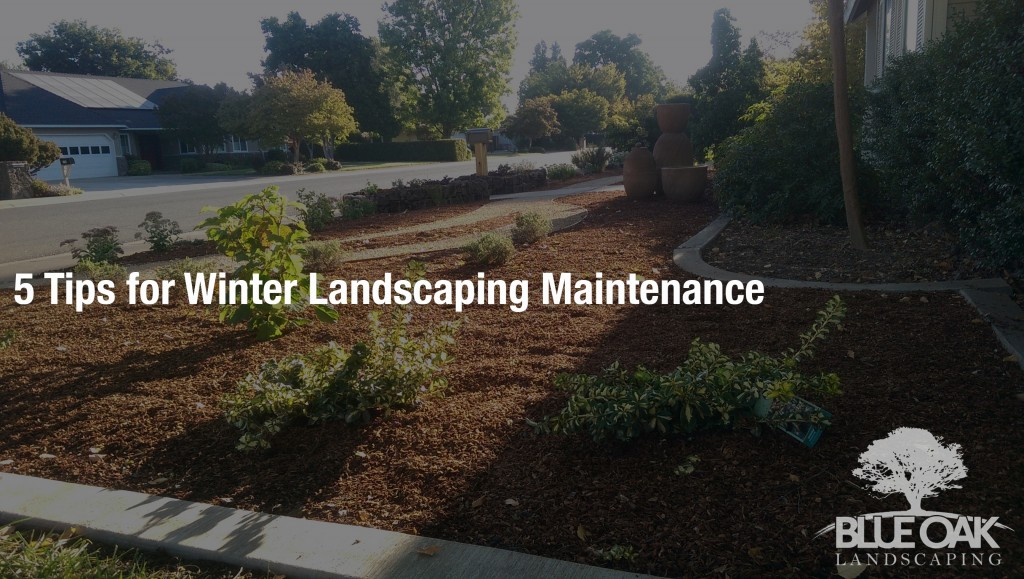 blue-oak-landscaping-chico-california-landscape-designs